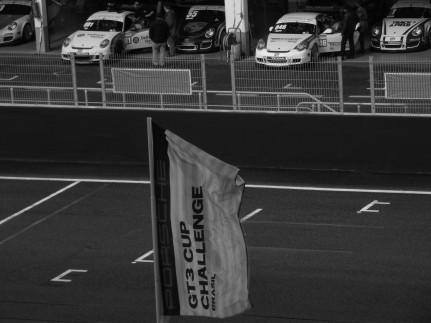 Porsche Brasil 2011 (29)
