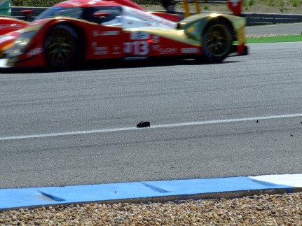 Le Mans Series Estoril 2011 (15)