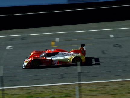 Le Mans Series Estoril 2011 (19)