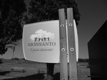 Monsanto F1