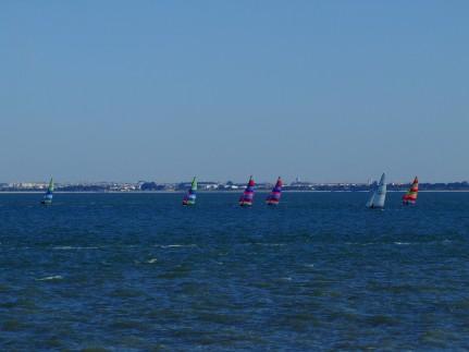 Regata Nauticampo 2012 (11)