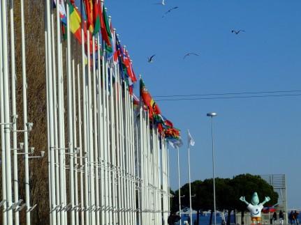 Regata Nauticampo 2012 (14)