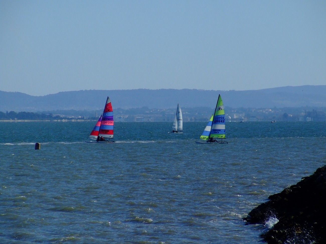 Regata Nauticampo 2012 (2)