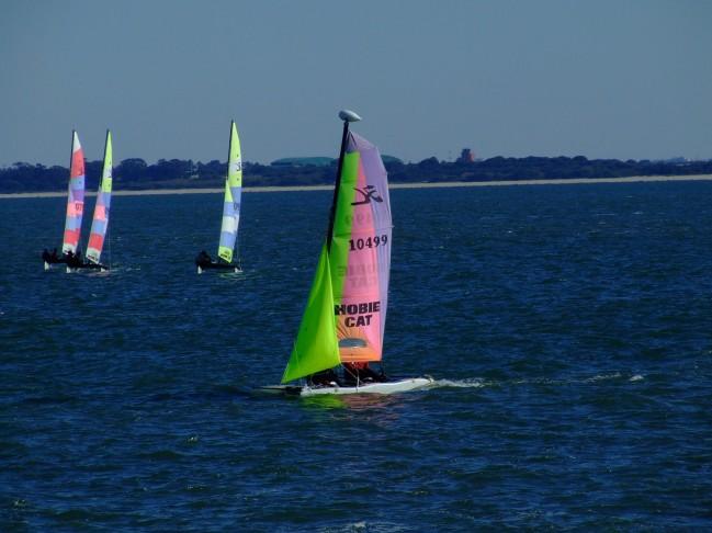 Regata Nauticampo 2012 (7)