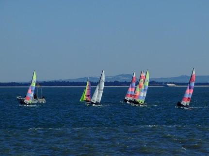 Regata Nauticampo 2012 (9)