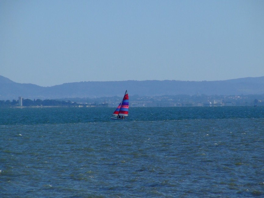 Regata Nauticampo 2012