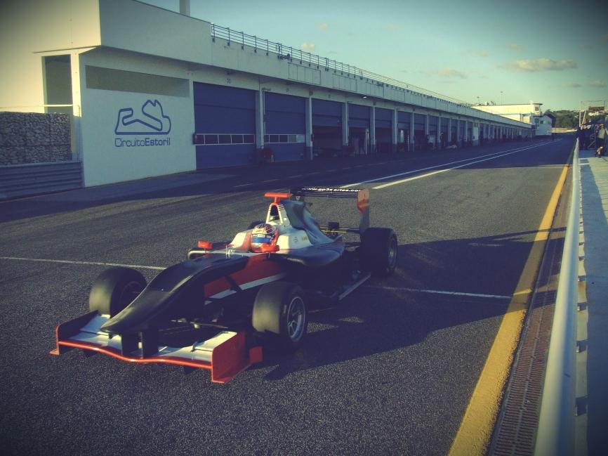 GP3 2013 CAR (8)